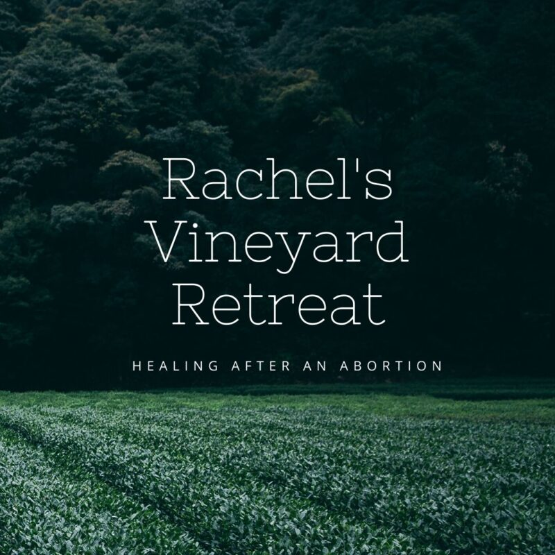 Rachel's Vineyard Retreat
